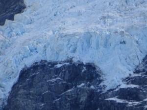 氷河!キグナスじゃないよ