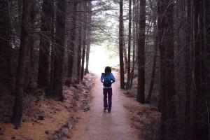 林の中をずんずん 舗装がされててゴンドラ山より歩きやすい