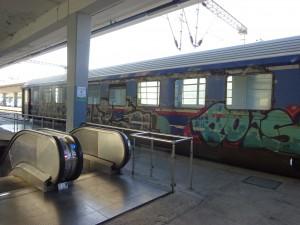 DSC05234